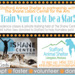 Stafford Shelter Obedience Classes at The Shane Center!