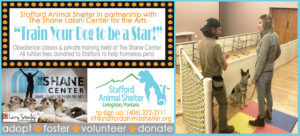 obedience class at shane center homepage banner
